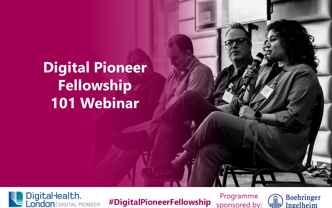 Digital Pioneer Fellowship 101 Webinar